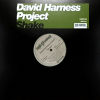 DAVID HARNESS PROJECT - Shake