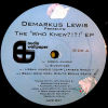 DEMARKUS LEWIS - The Who Knew EP