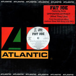 FAT JOE feat REMY - Opposites Attract What They Like