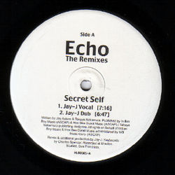 ECHO - Secret Self/Sparks From A Wheel The Remixes
