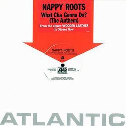 NAPPY ROOTS - What Cha Gonna Do?