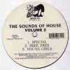 EDDIE S - The Sounds Of House Vol 2