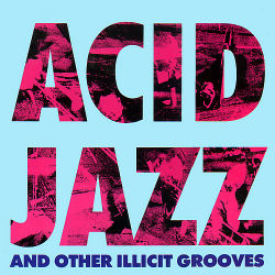VARIOUS ARTISTES - Acid Jazz And Other Illicit Grooves