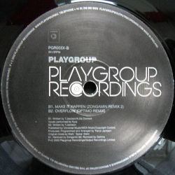 "PLAYGROUP - Limited Edition 12"" Remix Album Sampler"