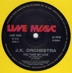 J.K. ORCHESTRA - You Took My Love