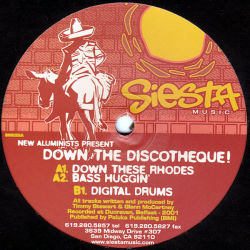 NEW ALUMINISTS - Down The Discotheque